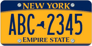 License plate search for vehicle history